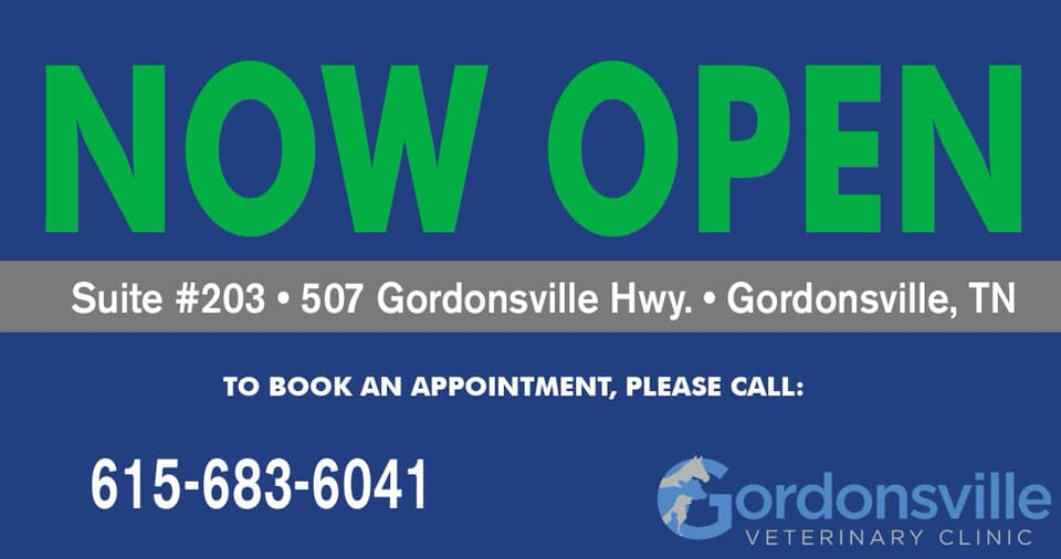 Business Spotlight: Gordonsville Veterinary Clinic | Smith County