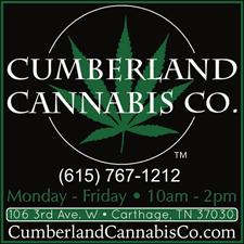 Cumberland-Cannabis-WEB-AD
